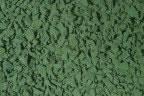 Зеленая радуга