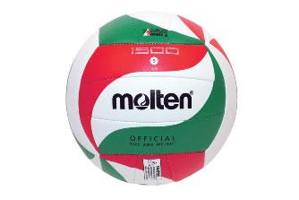 Мяч волейбольный: S05562