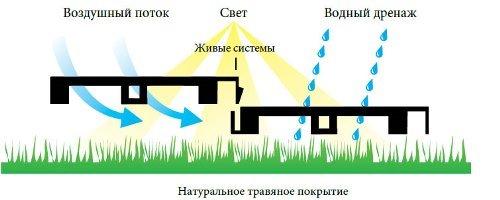 Циркуляция света, воды и воздуха