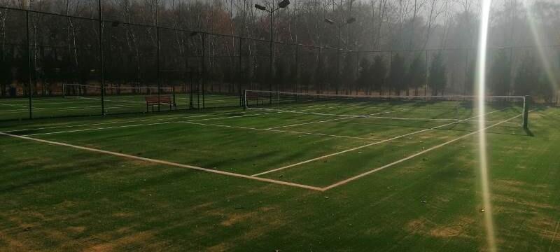 Теннисный корт в сан. Березка